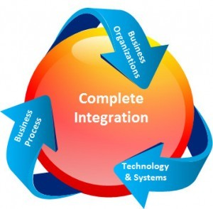 Process to System Integration Consulting